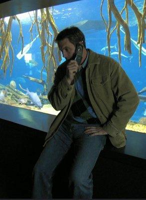 mattphone chatt