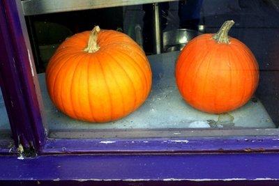 purple___pumpkins.jpg