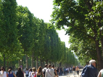 Paris_132.jpg