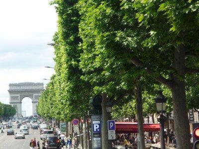 Paris_348.jpg