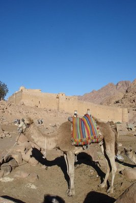 Katharinenkloster am Fusse des Mt. Sinai