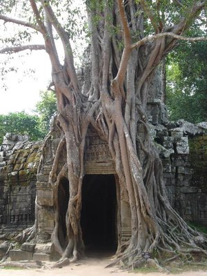 Tempeleingang.jpg