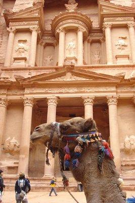 Treasury mit Kamel