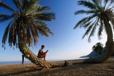 _gypten_-_Sinai.jpg
