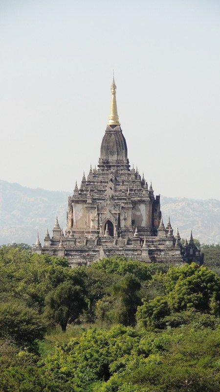 large_270_gr_sster_T..n_Bagan.jpg
