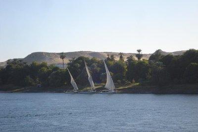 taegliches Bild am Nil - die Felukken