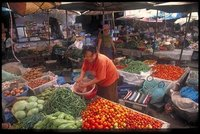 Kochkurs Vientiane - frische Zutaten unerlässlich