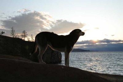 Olkhon_-_A.._Sunset.jpg
