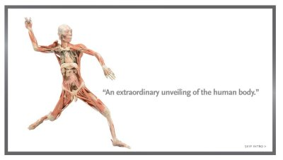 bodies2.jpg