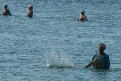 Zanzibar women use an old fishing technique of slapping water with a stick while walking round and round in a circle with a net to catch the fish.