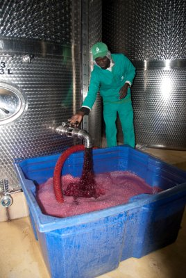 Shiraz fresh from the tank at Fairview winery in Paarl.