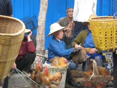 Chickens to dogs are sold at the morning meat market.