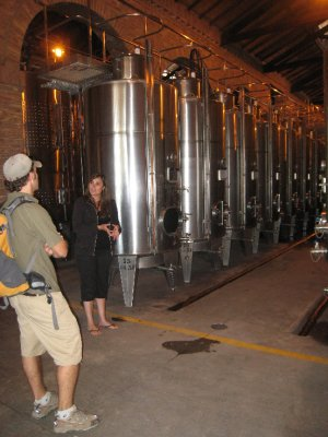 These stainless steel tanks hold the cheaper and younger red wines, white wines and champaign for fermenting. Alta Vista uses huge cement tanks for the higher quality wines, because that allows for better temperature control.