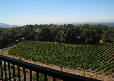 A family Bar Mitzvah brought us to California in August. We enjoyed Sonoma and Napa Valleys, with our favorite destination being Healdsburg. We had a lovely stay at the Haydon Street Inn.