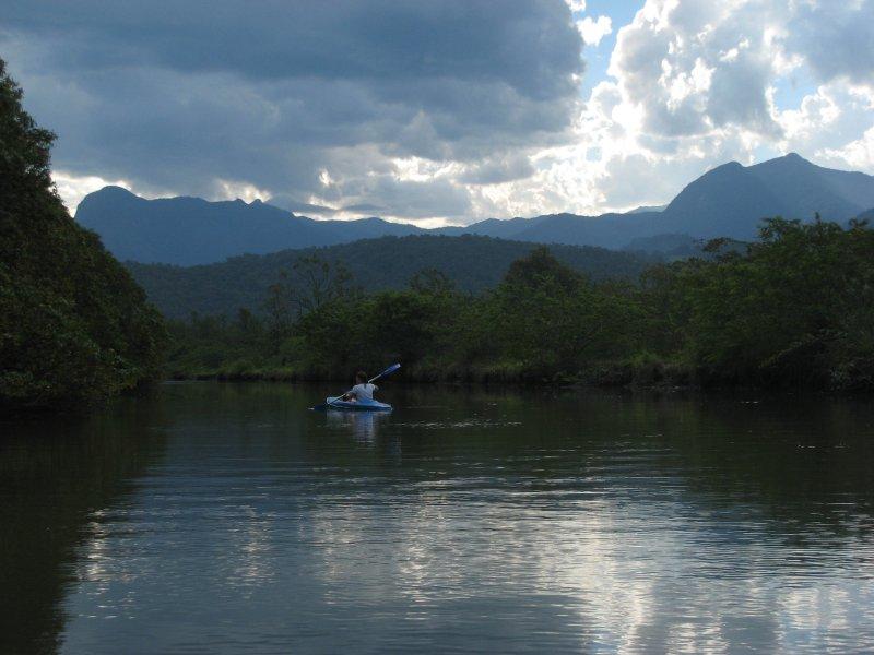 Kayaking in Paraty mangrove