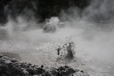Rotorua mud pools, they were ace!!