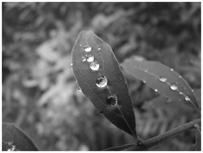 Droplets..