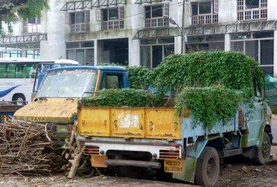 Garden_Truck.jpg