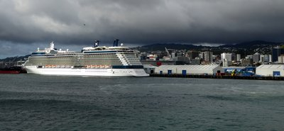 Wellington_harbour.jpg