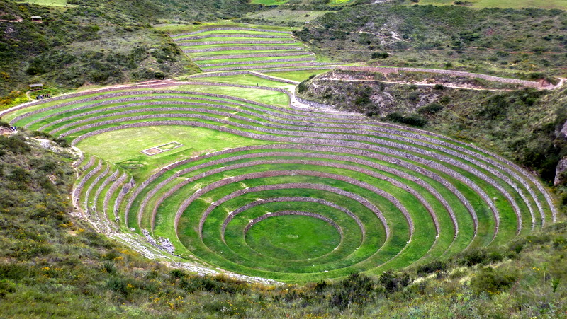 large_Agricultural_terraces.jpg