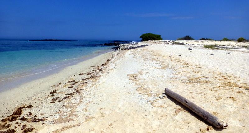 large_Deserted_Beach.jpg