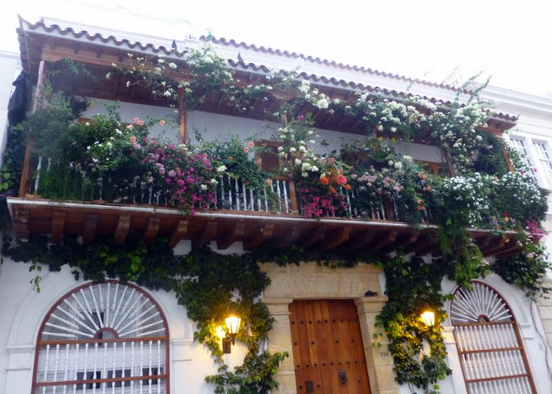large_Flowered_b..s_Cartagena.jpg