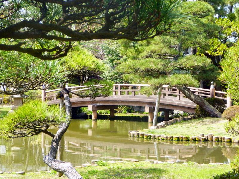 large_Hakusan_bridge.jpg