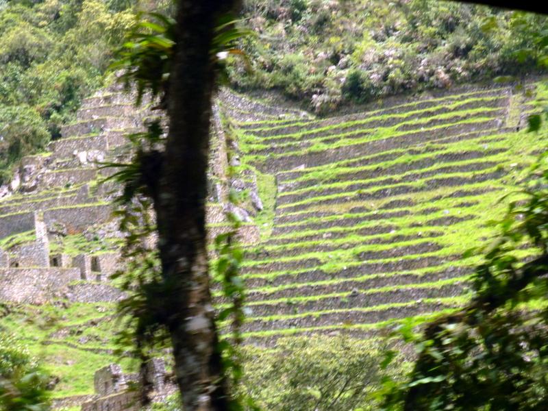 large_Inca_terraces.jpg