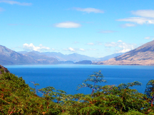 large_Lake_Wanaka.jpg