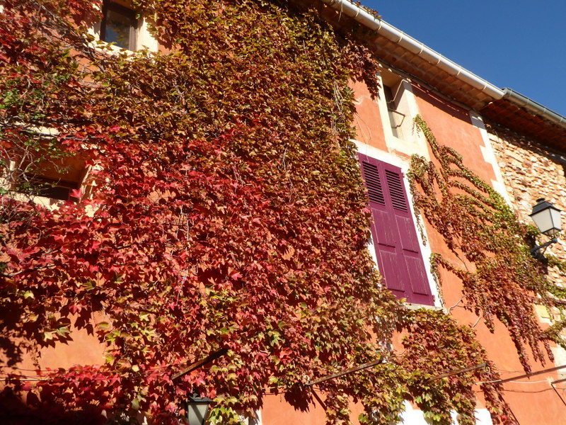 Luberon Colours 4