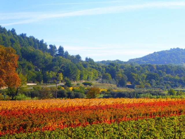Luberon Colours 6