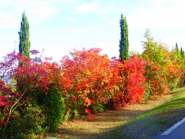 Luberon Colours 9