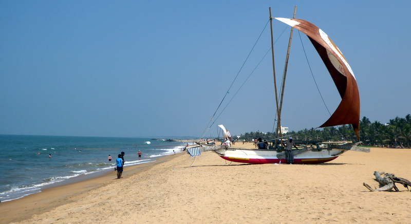 large_Negombo_beach.jpg