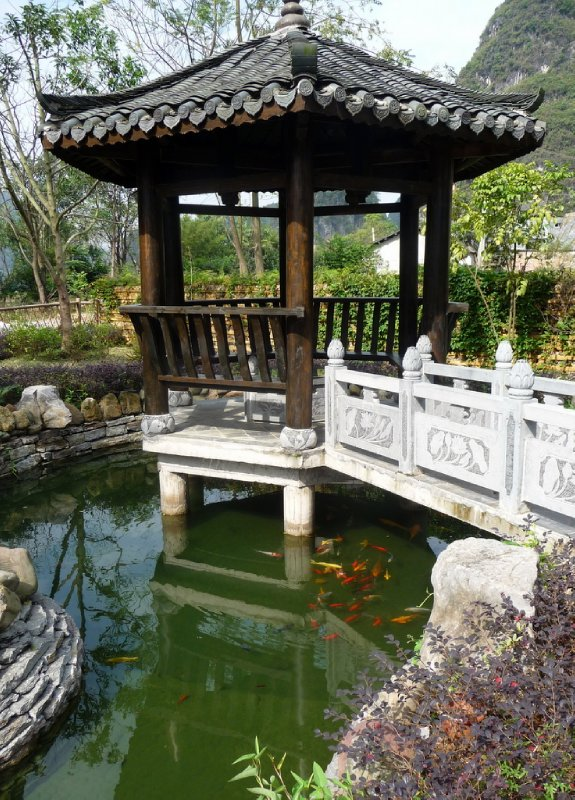 Garden of the Tea Cozy Hotel