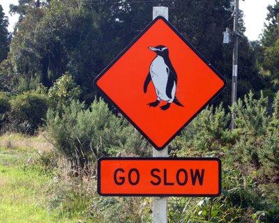 slow_penguins.jpg