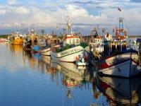 Fishing boats Tavira