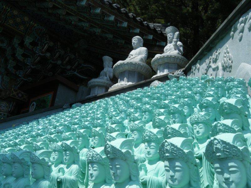 Many Buddahs