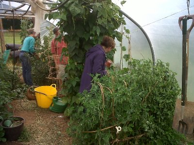 The veggie tunnel.