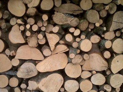 The woodpile.
