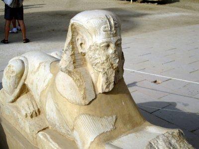 A mini sphinx.