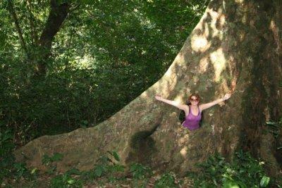 A_in_tree.jpg