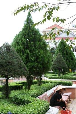 Can_Tho_Garden.jpg