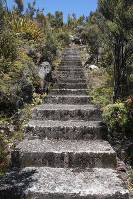 Steps @ Millerton Mine