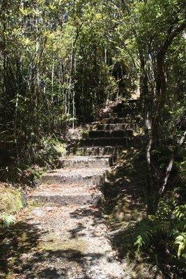 Steps @ Millerton Mine