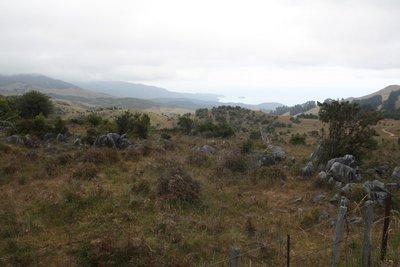 Takaka Hilltop