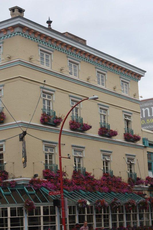 Swans Hotel