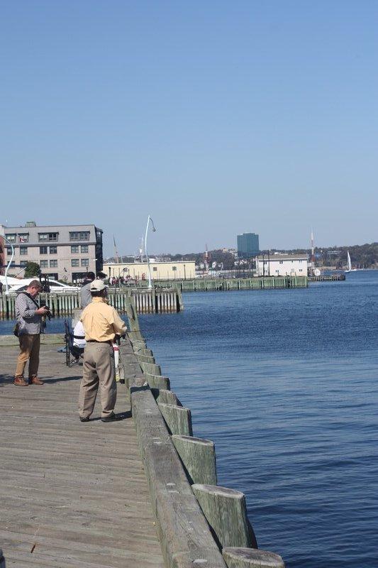 Fishing @ Halifax Waterfront