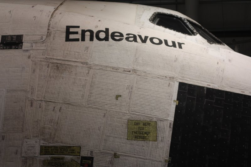 Endeavour made of cardboard