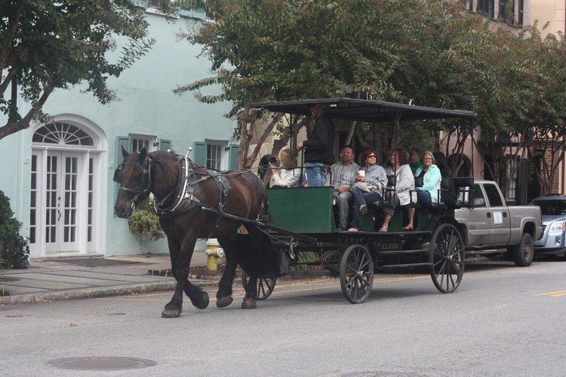 Horse-drawn bus