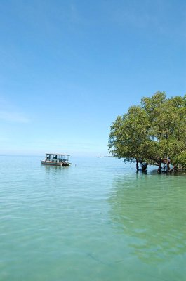 Bunaken-North Sulawesi
